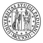 Logo Università di Padova