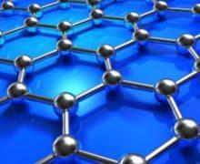 Xylella. Unisalento: lotta con le nanotecnologie applicate