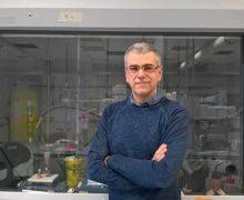 Contro la Xylella arrivano le nanotecnologie applicate