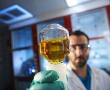 Scienza. In Campania torna il congresso sulla Biochimica e sulla Biologia Molecolare