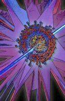 Quando il target è la cellula:l'importanza imprescindibiledi divulgarela cultura citometrica