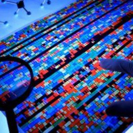 Bioinformatica:una scienza necessariaper combattere ilCovid-19 … E non solo