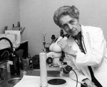 EBRI (European Brain Research Institute) Rita Levi Montalcini